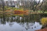 jesień w Łazienkach Warszawskich - foto-K.S.-Altro