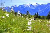 Valle Blenio, Switzerland