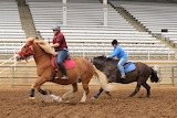 Down to the wire - Draft Horse Derby