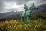 Face-landscape-model-nature-horse-photography