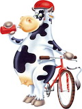 Cow with bike