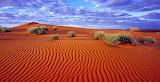 Desierto de Simson