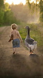 Friends walking together