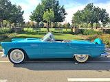 1956 Ford Thunderbird Convertible5