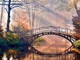 Morning-Light-Bridge