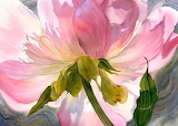 Floral Watercolor by Marne Ward