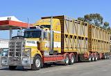 Kenworth T909 livestock transport