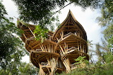"Architecture archatlas ""Sharma Springs"" ""ABIANSEMAL, INDONESIA"""