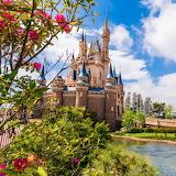 castle in Disneyland