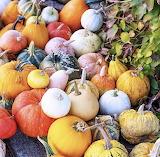 Pumpkins and ivy