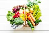 Hortalitzes Orgàniques - Organic Vegetals