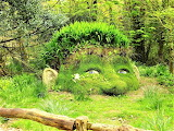 Face Lost Garden of Heligan Cornwall England