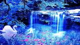 Waterfalls & Swan