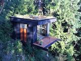 #Tiny Tree House