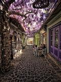 #Lesvos, Greece