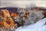 Winter grand canyon