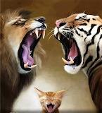 Hear Me Roar !