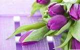 Pretty Purple Smurple