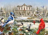 Country house birds
