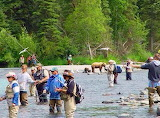 Bears Fishing with People