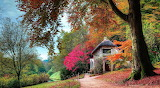 Cottage in the park in the fall