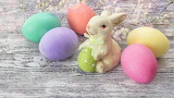 Easter, colored eggs, bunny, flowers