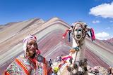 Peruvian and his llama