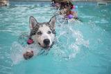 ☺ Cute swimmer...