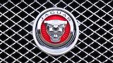 Jaguar emblem grill