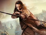 The Hobbit - Desolation of Smaug - Bard 1