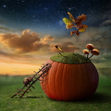 Funny Poster with Snail-Astronomer and Pumkin-Observatory 102717