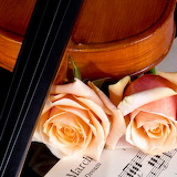~Violin and Peach Roses~