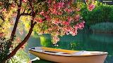 Wiosna nad jeziorem