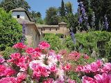 Alhambra-garden-flowers-trees