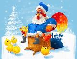 chicken claus