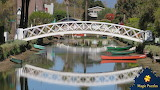 Venice, California USA canals by Joyce Watson from auricle99 on