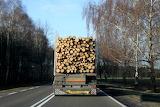 Jedzie TIR drewno wiezie