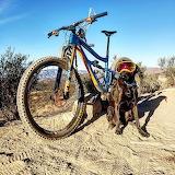 Riding Buddy