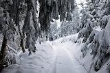 Zima w górach - foto-Witold Stachnik