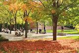 Fall at Bentley