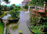 Tropical garden - Madeira Island