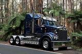 Trak-016