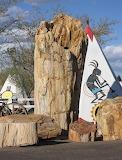 Named Geronimo, Largest Petrified Tree