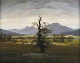 Der einsame Baum (C D Friedrich)