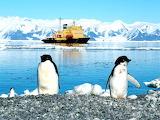 Ross Ice Shelf - Antartide