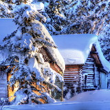 Cabins in Heavy Winter