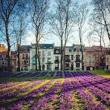 Brussels printemps