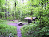 Last of The Smoky Mtns - Abingdon Gap Shelter