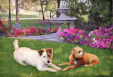 two-dogs-in-garden