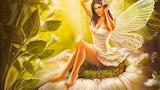 Beautiful-fairy